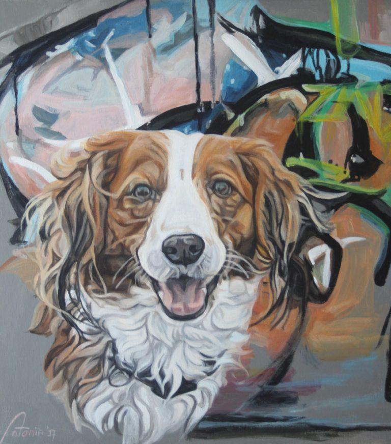 Graffiti kooiker © Antonia hondenschilderen.nl